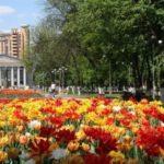 Три дня жуковчане будут праздновать День города!