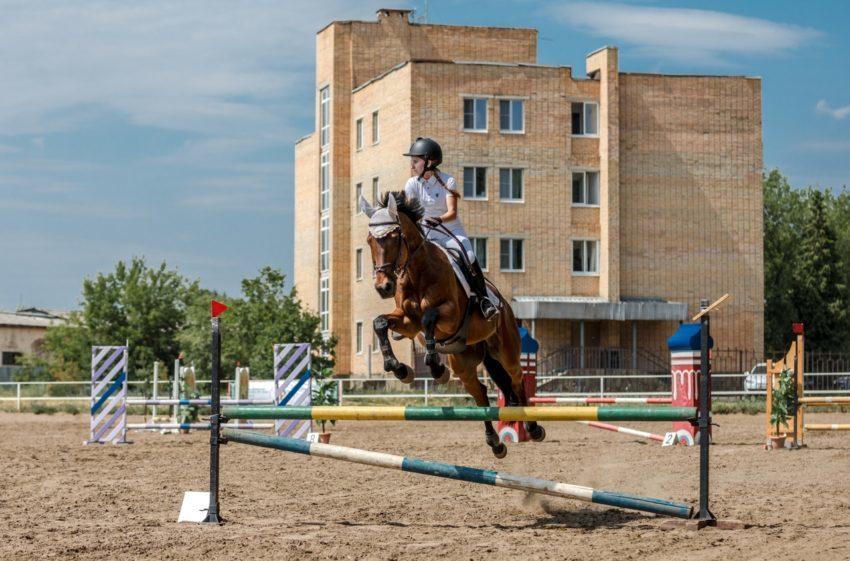 Осенний кубок TOTAL HORSE