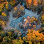 Осень в Быково