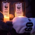«Час Земли» в этом году проведут 28 марта в 20:30